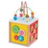Picture of Cub cu 5 activitati